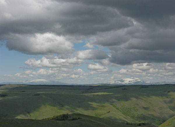 south-hills1.jpg