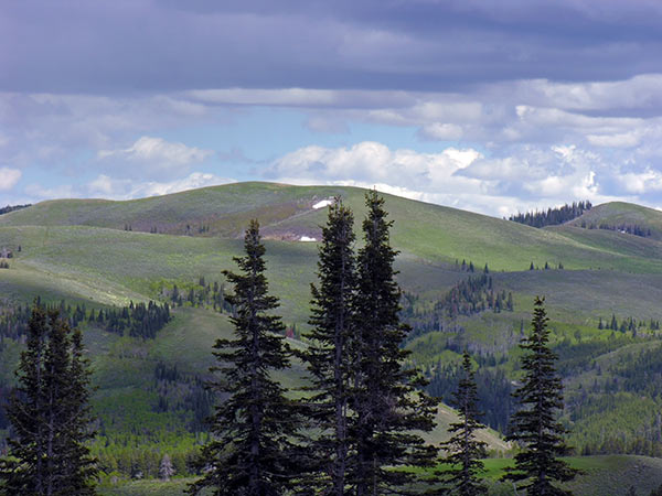 southhills3-crest.jpg