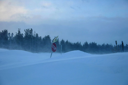 Very Deep Snow At West Yellowstone The Wildlife News