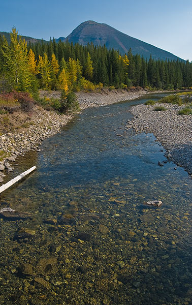 Low September water on the North Fork. Copyright Ralph Maughan