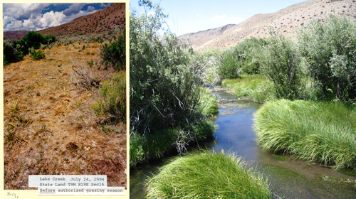 Left: Condition of state land on Lake Creek photo: WWP - July 24, 1994;  Right: Condition of state land - July 18, 2007 - photo: Idaho Department of Lands