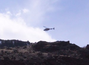 Wildlife Services Helicopter