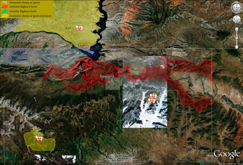 Detail of Utah outbreak